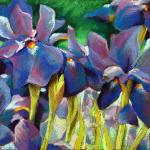 "<font size=7 color=""#ff0000"">&#9679;</font>SOLD </br>Iris </br>2/28/15, New York, NY </br>pastel </br>posted 3/1/15 8:45am"
